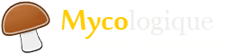 Champignon et mycologie